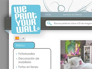 We Print Your Wall
