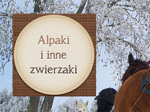 Alpakoland