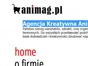 Agencja Kreatywna Animag.pl